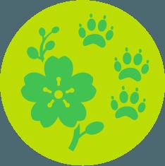 faune-flore