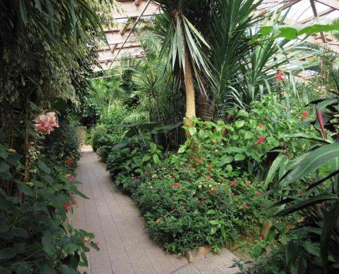 Jardin-aux-Papillons